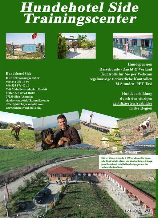 side hayvan oteli (9)